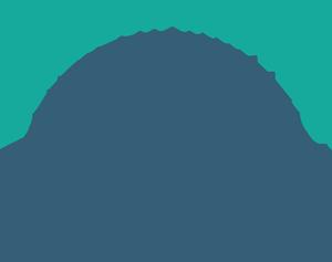 Devereux Whippets